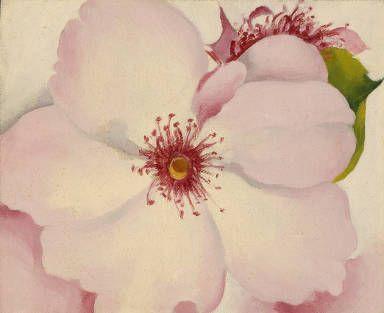 Rose by Georgia O'Keeffe 1957