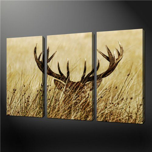 Amazon.com - 3 Piece Wall Art Painting Pictures Print On Canvas Deer ...