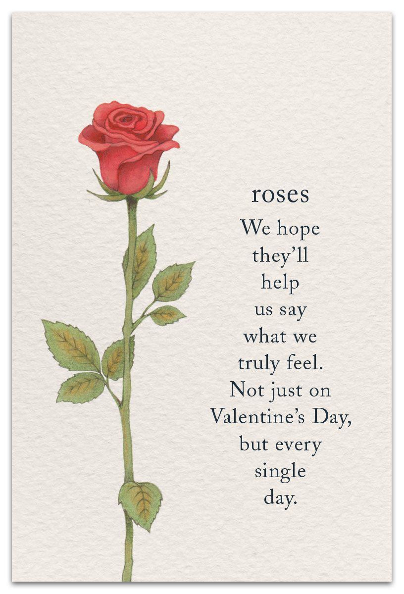 Roses With Images Flower Quotes Flower Meanings Symbols And