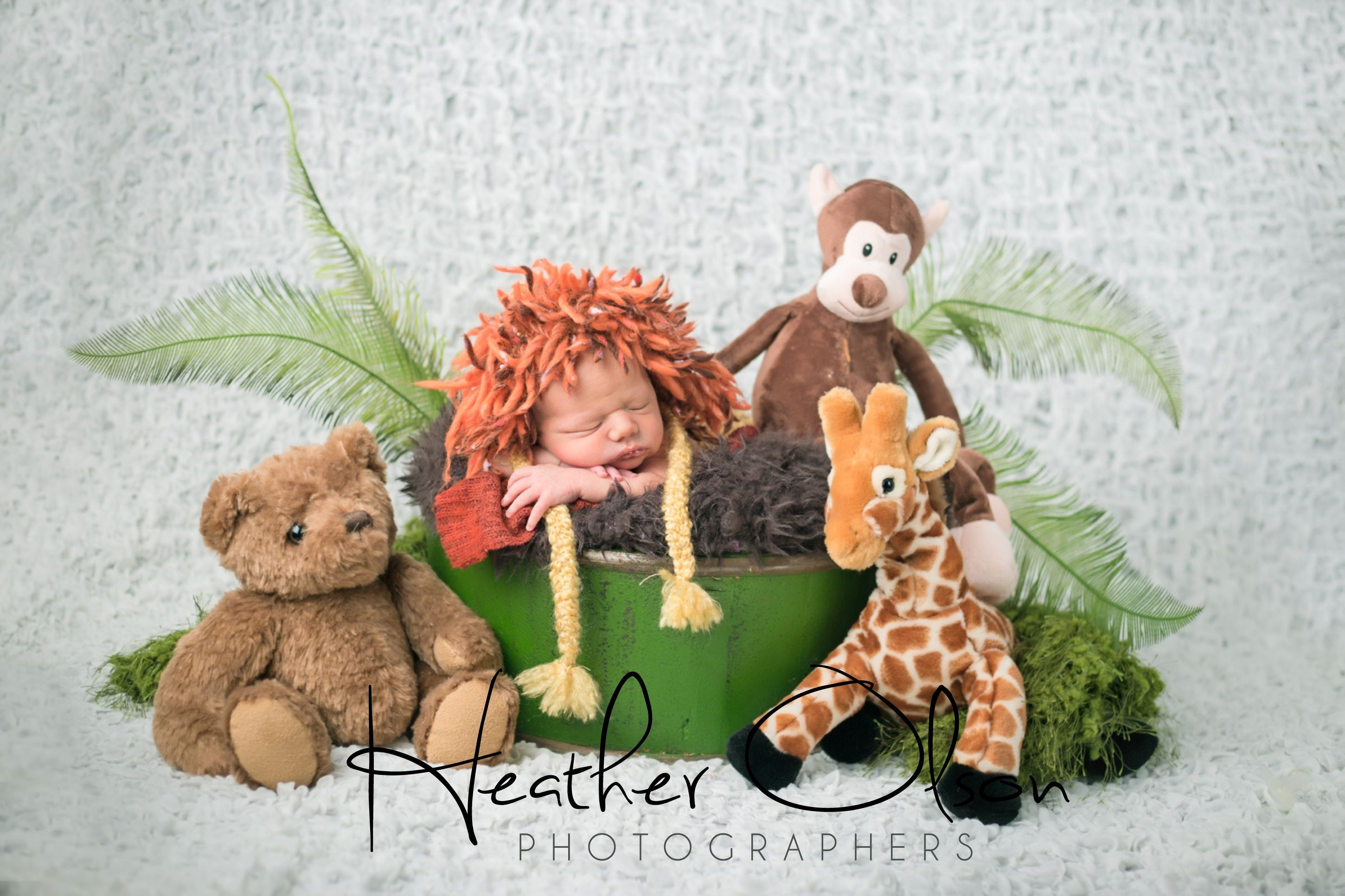 King of the jungle lion king lion king pictures newborn shoot baby boy