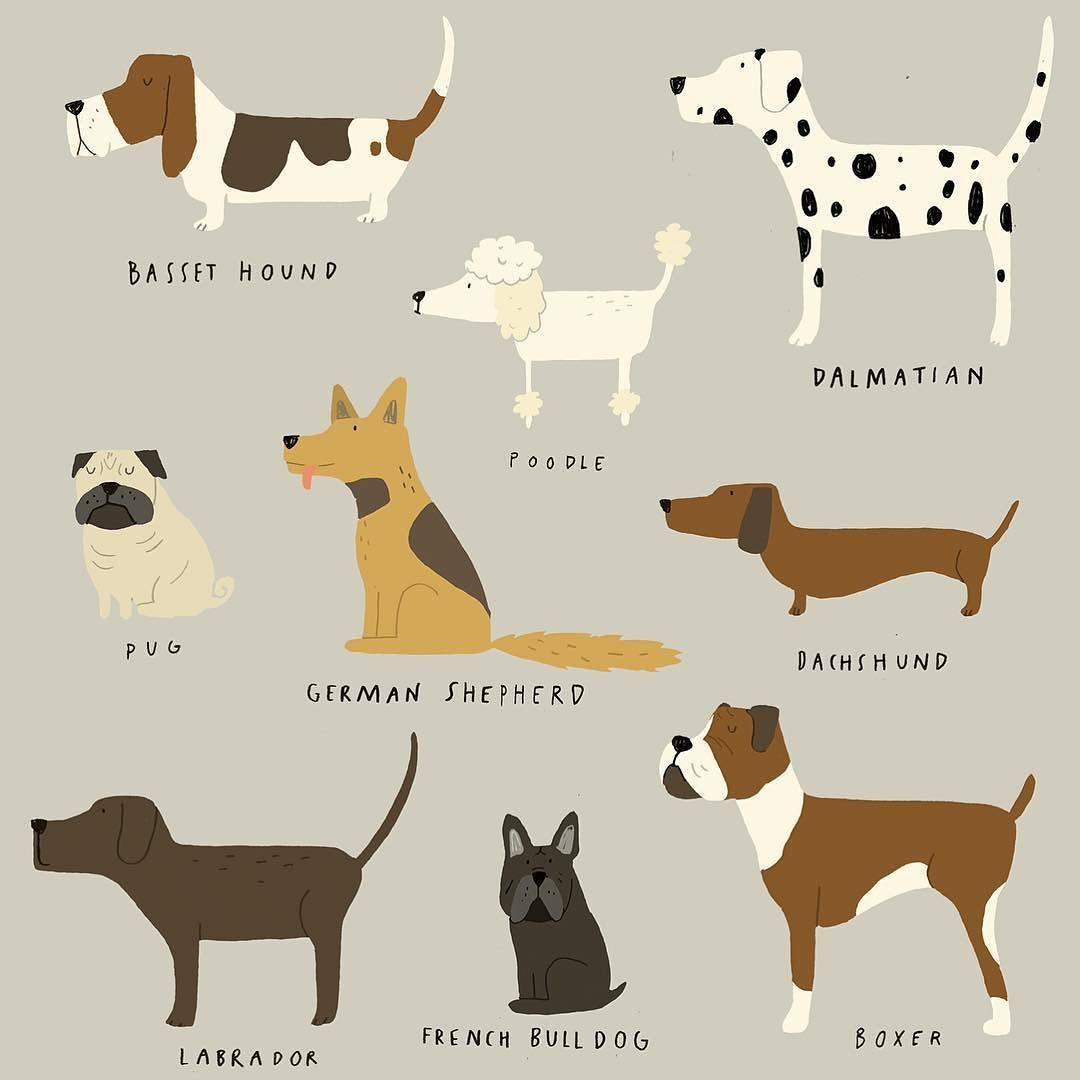 Instagram Photo By Katrin Wiehle May 27 2016 At 3 51pm Utc Dog Illustration Dog Art Puppy Dog Nursery