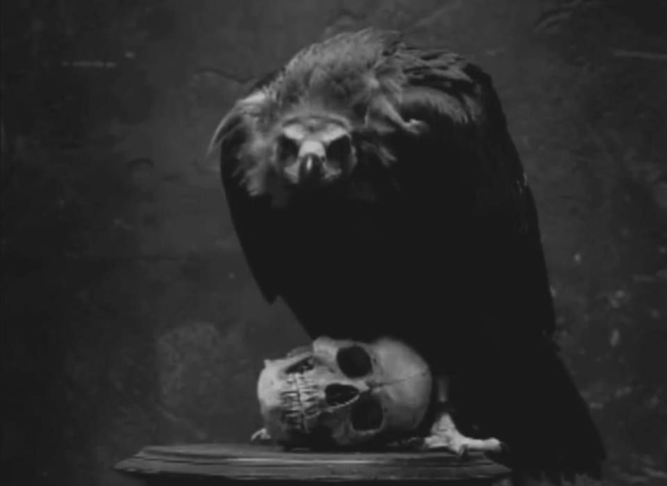 Pin by ♛ Linda ♛ on Requiem for the Dead | Pinterest | Darkness ...