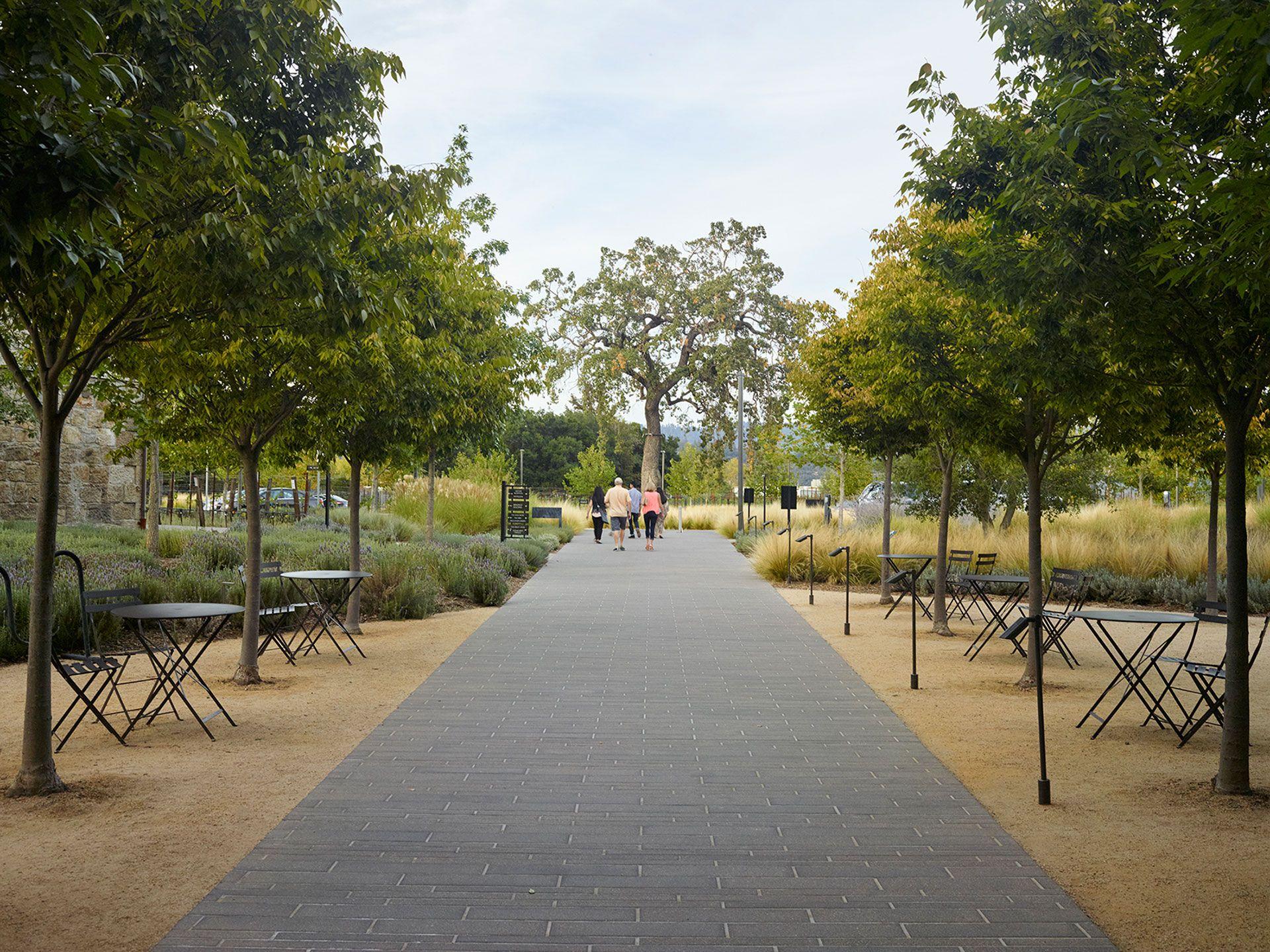 Hall Wines Landscape Design By Ojb Landscape Landscape Design Urban Landscape