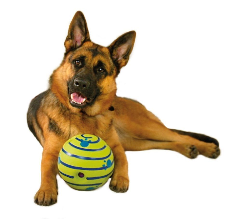 The Wobble Wag Giggle Ball Is The Interactive Ball Made For Dogs