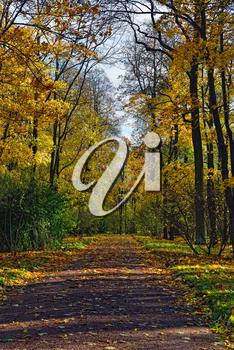 iPHOTOS.com - Stock Photo of an Autumn landscape in Catherine Garden, Pushkin, Russia #photo #photography #fall #season