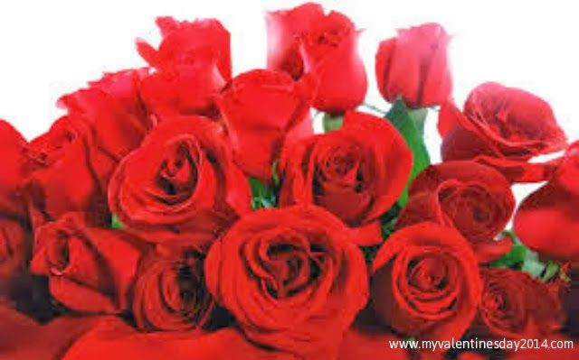 Valentines Day Rose Bouquets 2014 for Couples