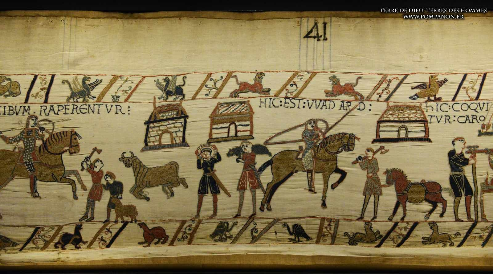 Bayeux Tapestry 41 Here Is Wadard