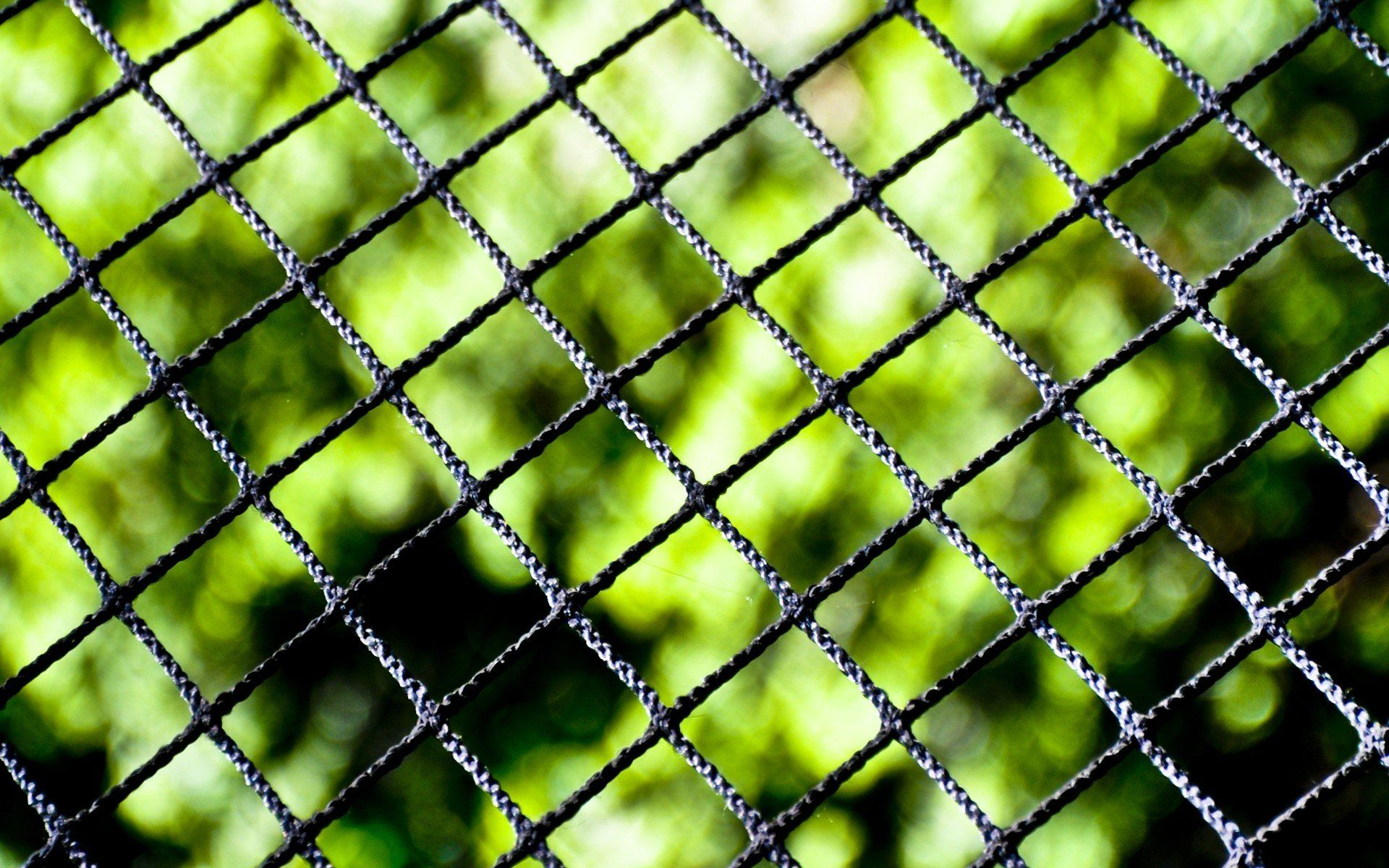 Samsung Blurred High Definiton Fencesfree Background Images Linkcloseup Backgroun Blur Background Photography Blurred Background Photography Blurred Background