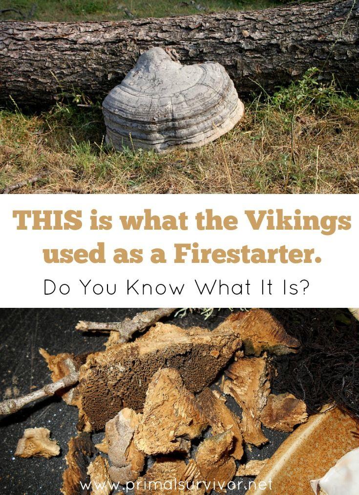 Vikings Used a Gross Survival Firestarter. Here's How to Make It