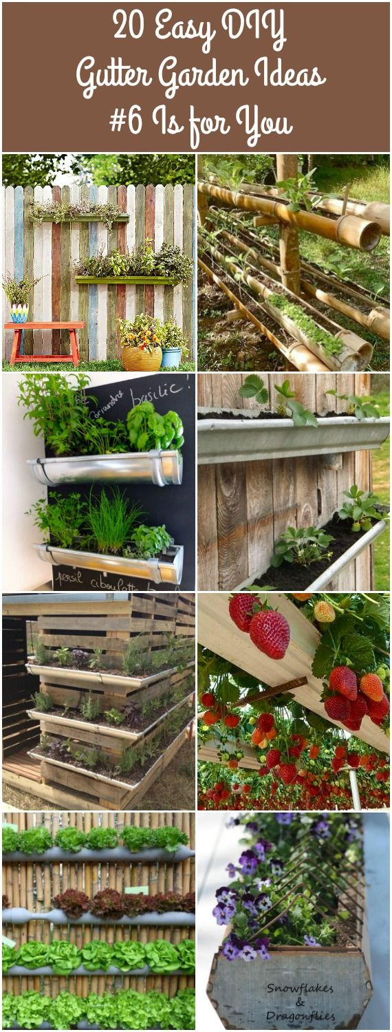 Growing strawberries in gutters diy idea - Designing And Growing Your Herb Garden In A Gutter Garden Is Fun And Exciting No