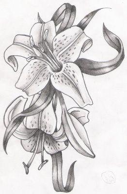 Blumen Blumenzeichnungen Blumen Zeichnung Und