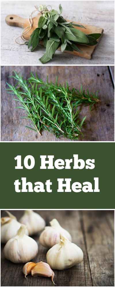 10 Herbs that Heal #naturalcures