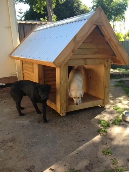 Dog Kennel With Front Veranda Pet Products Gumtree Australia Wyong Area Berkeley Vale 1024718869 Dog Kennel Cavachon Puppies Big Dog Breeds