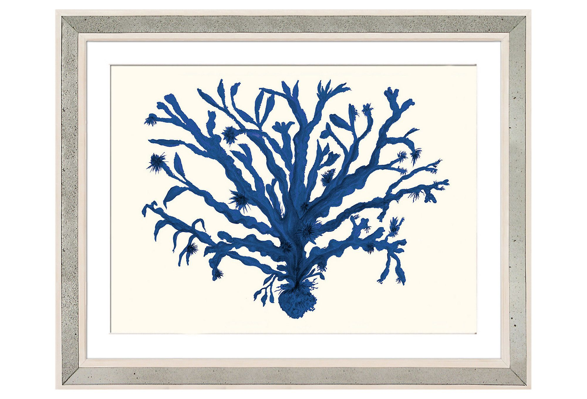 William stafford miranda baker coral v accpicture pinterest