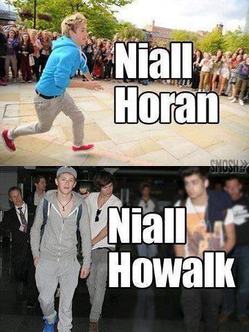 Ha Pun Niall Horan Pun Celebrity Name Puns Celebrities Funny One Direction Humor