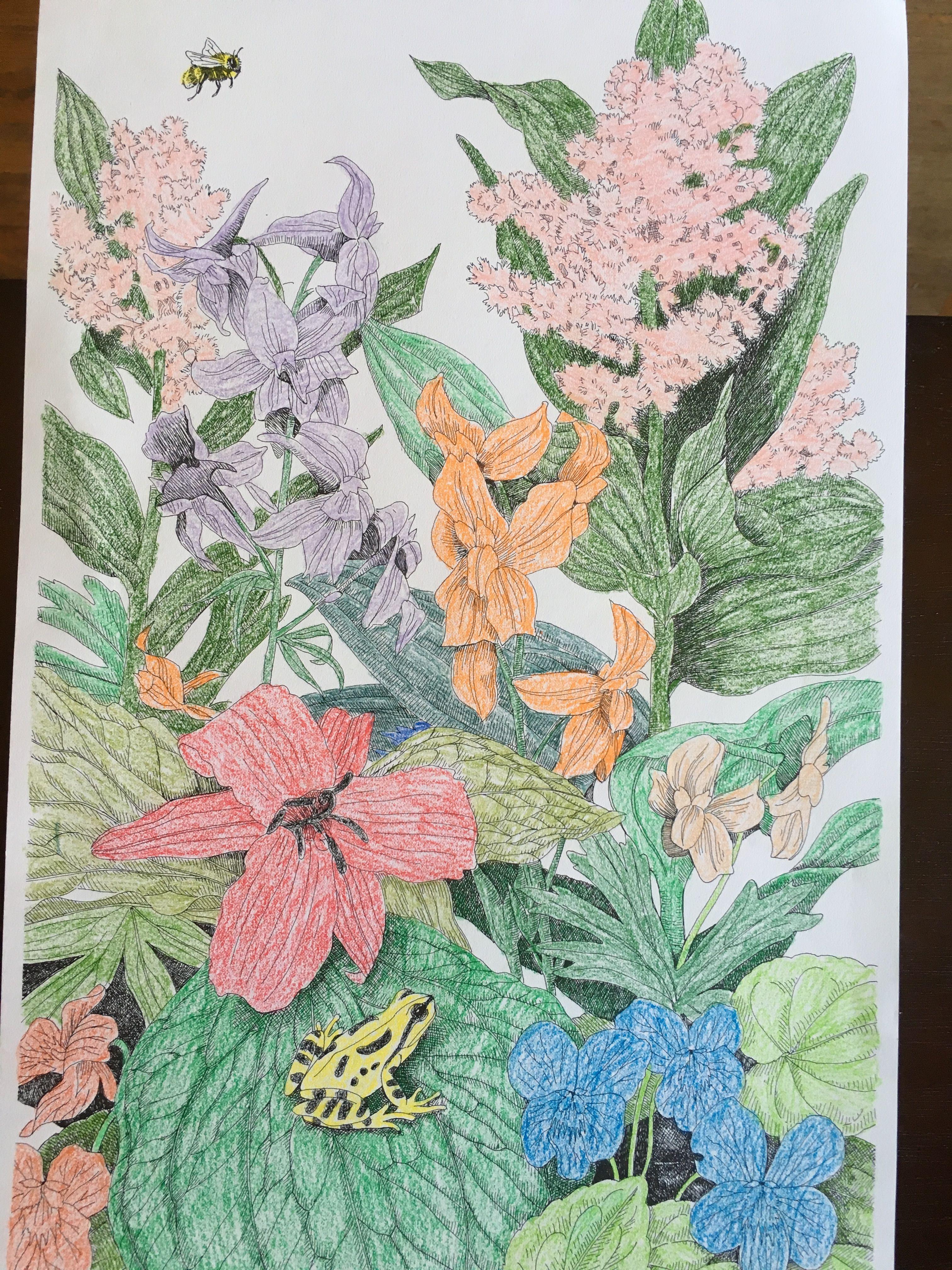 Crayola Color Escapes Garden