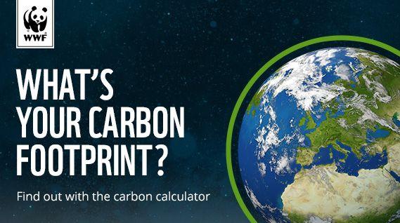 wwf footprint calculator carbon footprint carbon footprint ecology. Black Bedroom Furniture Sets. Home Design Ideas