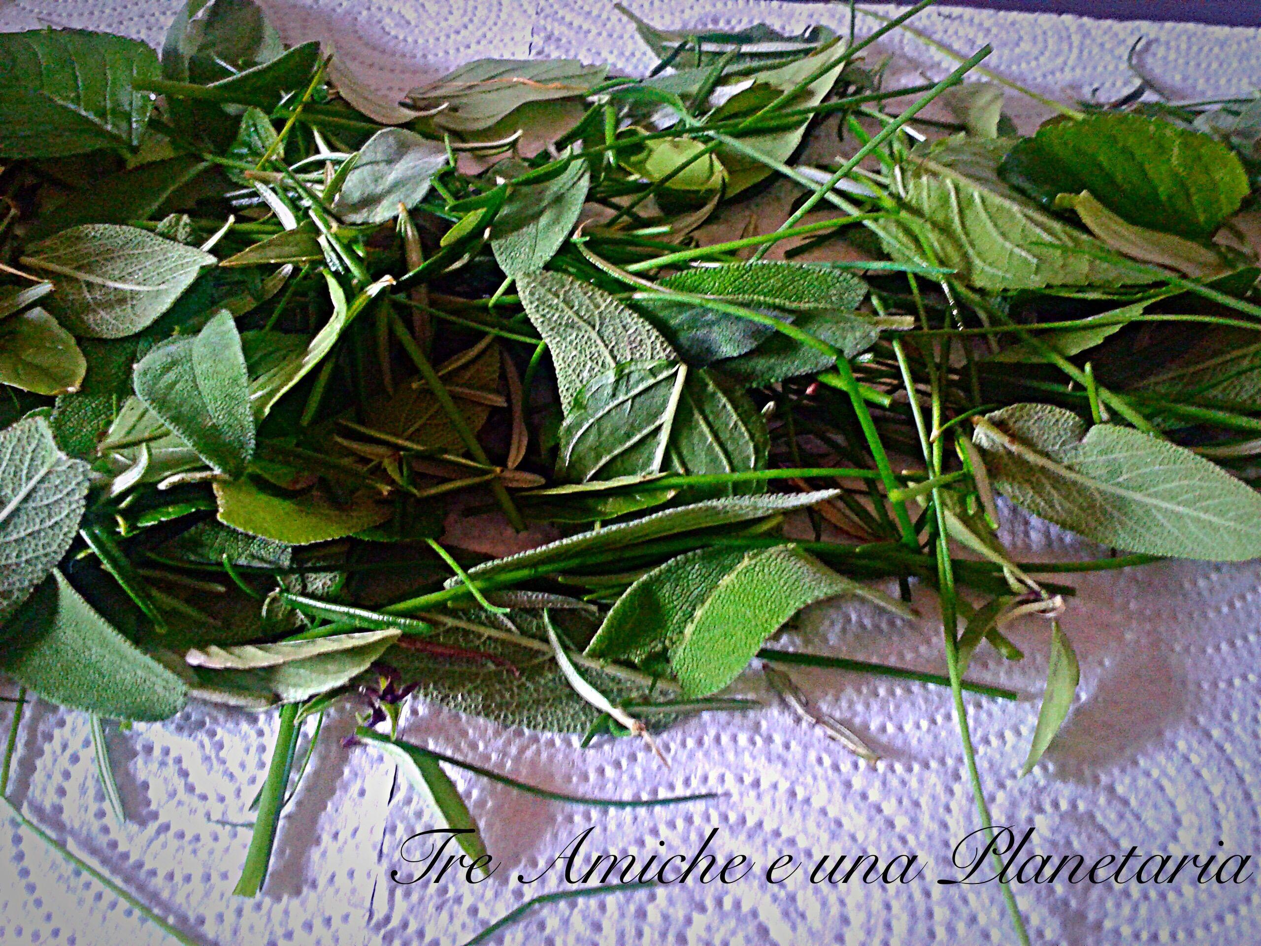 Come essiccare le erbe aromatiche nel microonde