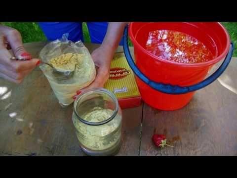 Горчица против слизней, тлей и других садовых вредителей - YouTube