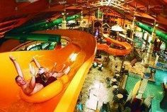 Great Wolf Lodge Poconos Pocono Mountains Pa Hotel Scotrun United States
