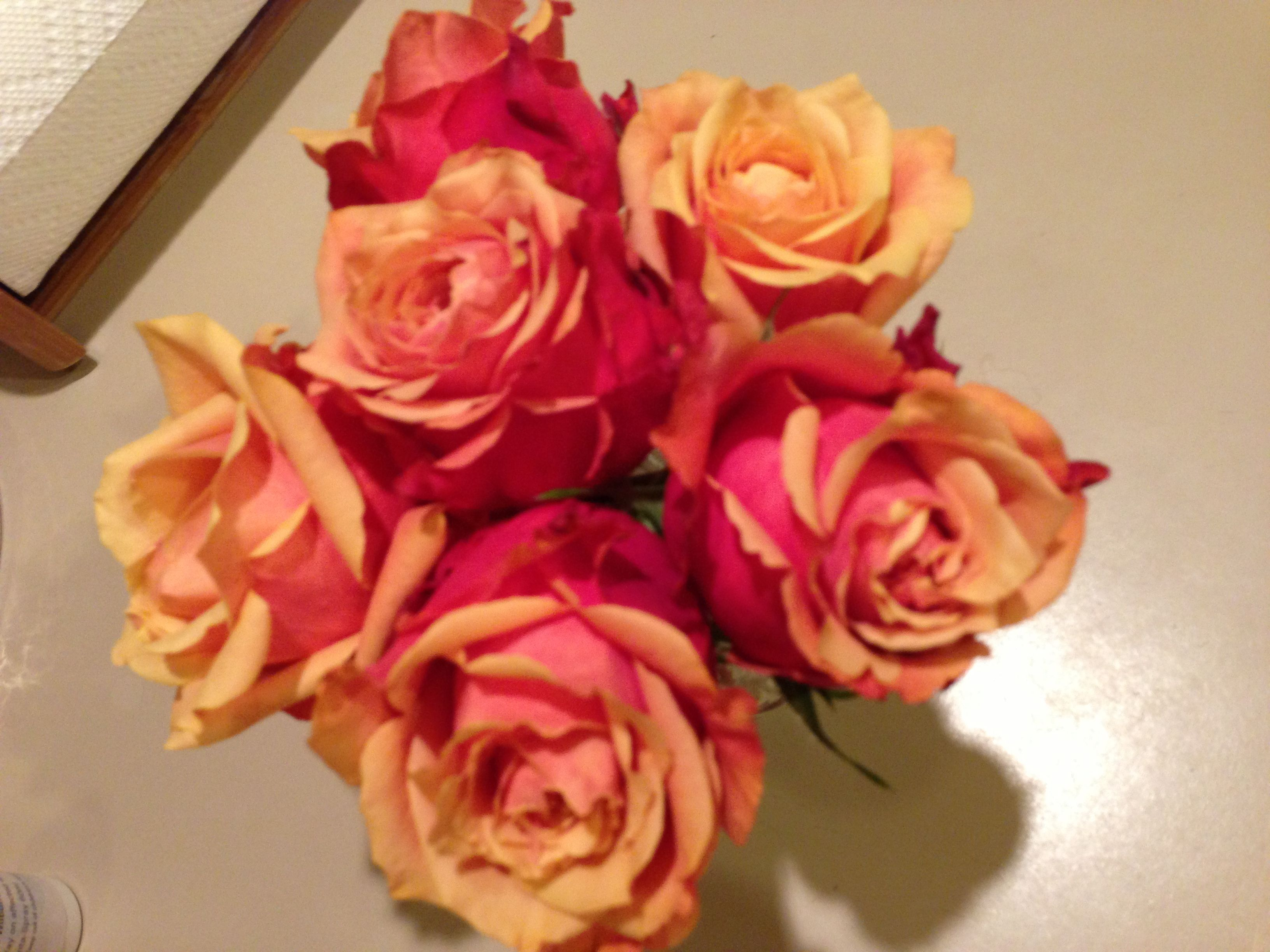 Love all the colors in these roses.