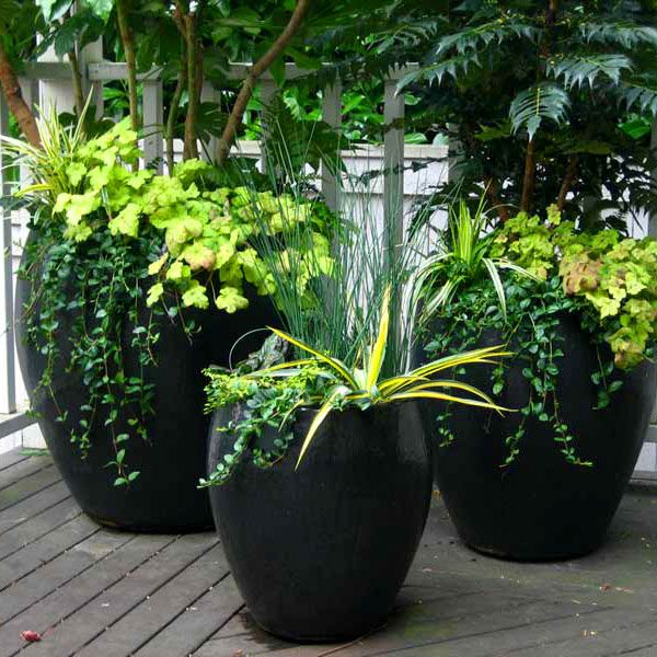 28a8db4fa10c5a56d5c9e763fc86803a - Vegetable Combination Ideas For Container Gardens