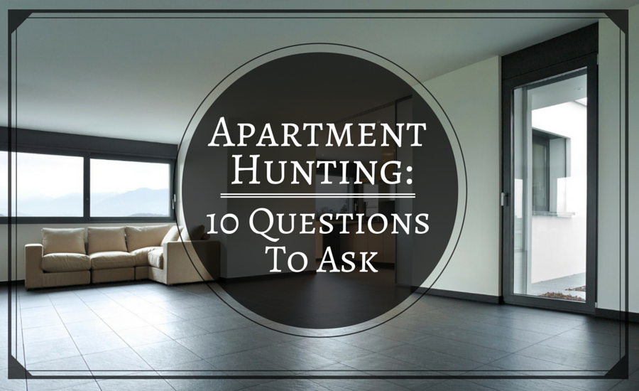 Things You Need For Your First Apartment To Get