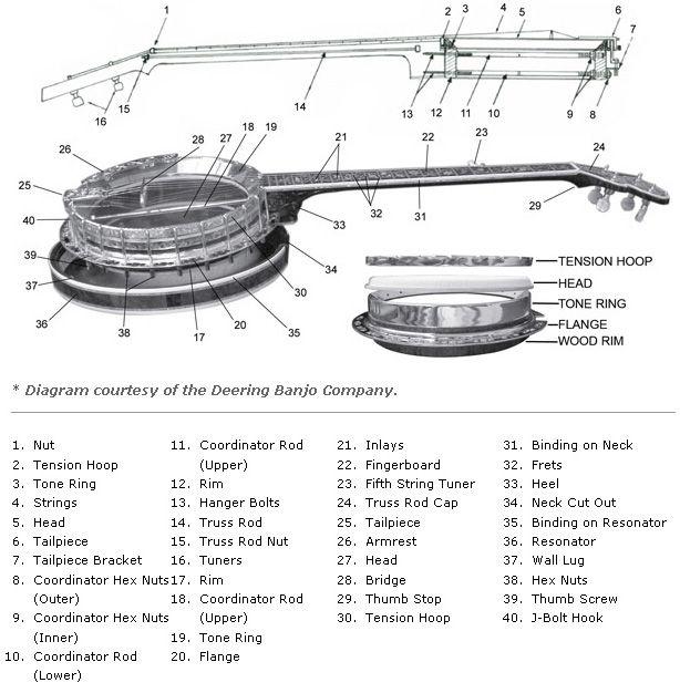 buying guide how to choose a banjo banjo instruments and guitars rh pinterest com Banjo Parts Suppliers Antique Banjo Parts