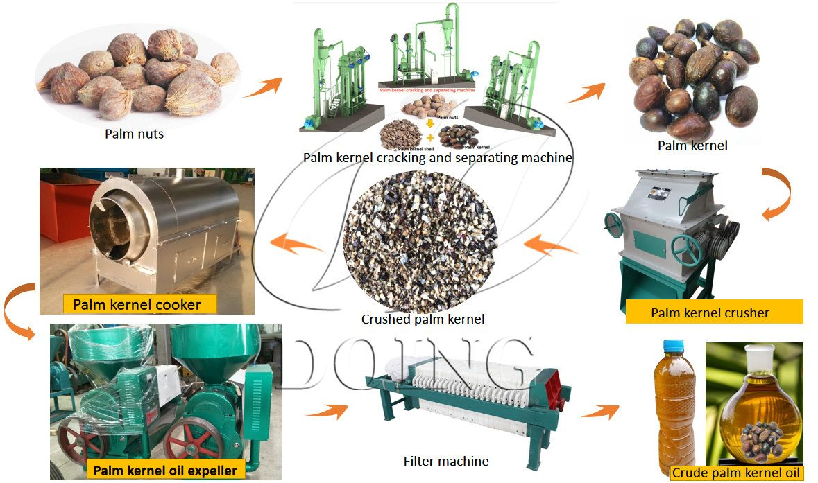 If You Want To Start A Palm Kernel Oil Mill Doing Group Can Help