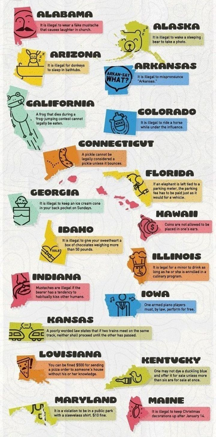 Crazy laws of the each state. | Clever/Funny/Makes Me Smile ... on crazy virginia, crazy california, crazy walmart, crazy directions map, crazy rush limbaugh,