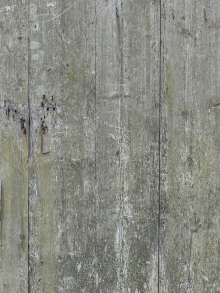 Old Grey Wood Texture Covered With Cracks Scratches And Chips Of White And Green Paint