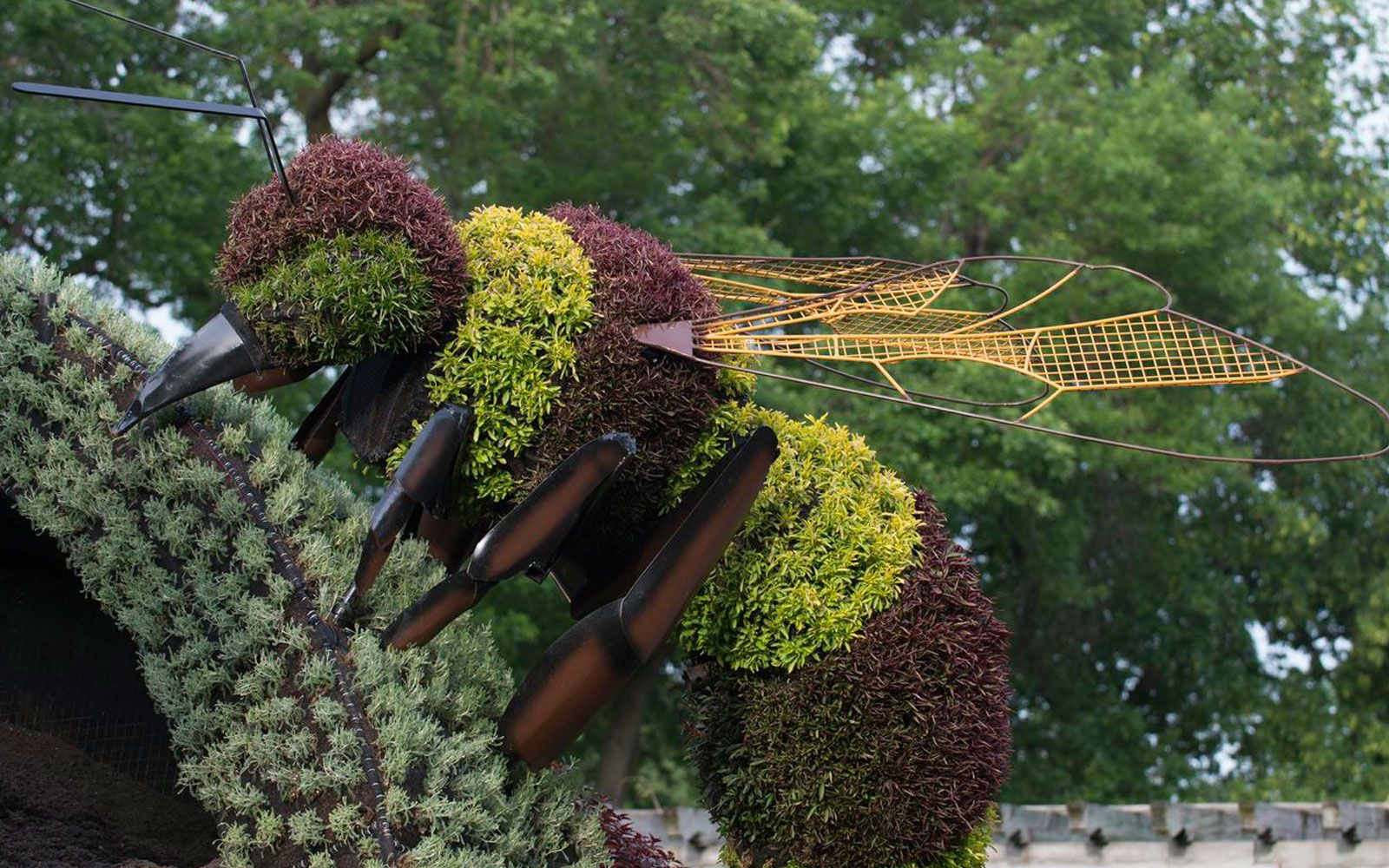 Bee Plant Sculpture At The Montreal Botanical Garden