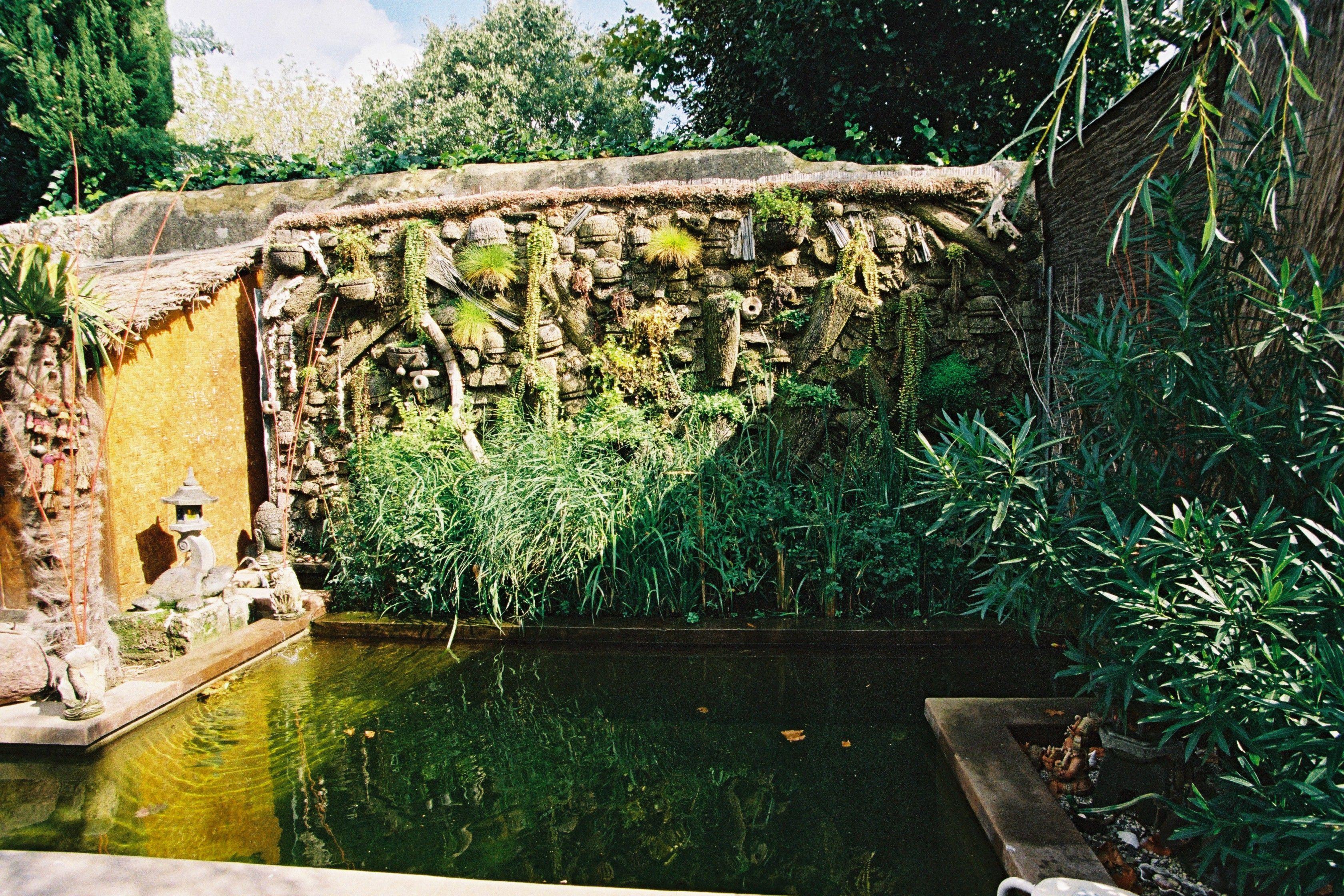Piscine Naturelle Dans Le Jardin Des Chambres D Hotes Pas Cher A