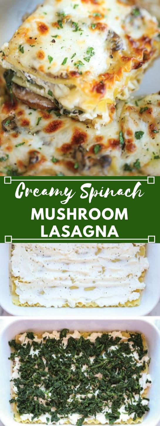 CREAMY SPINACH AND MUSHROOM LASAGNA #lasagna #vegan #vegetarian #dinner #mushroom #insurancequotes