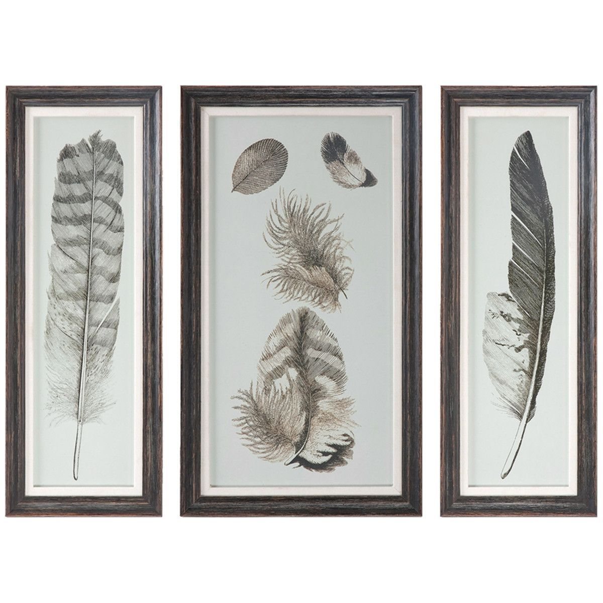 Uttermost Feather Study Distressed Black Artwork Set of 3