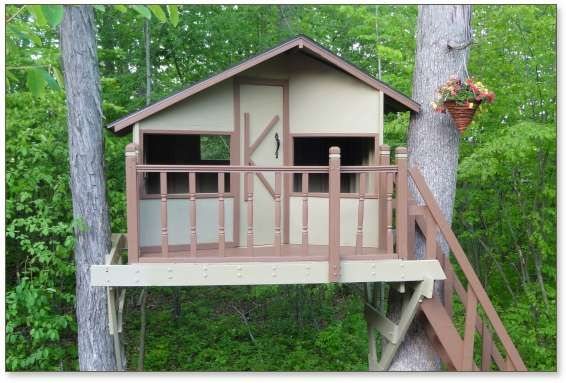tree house plans for two trees. contemporary trees zelkova tree house plans for two trees  treehouse guides on tree house plans for two trees n