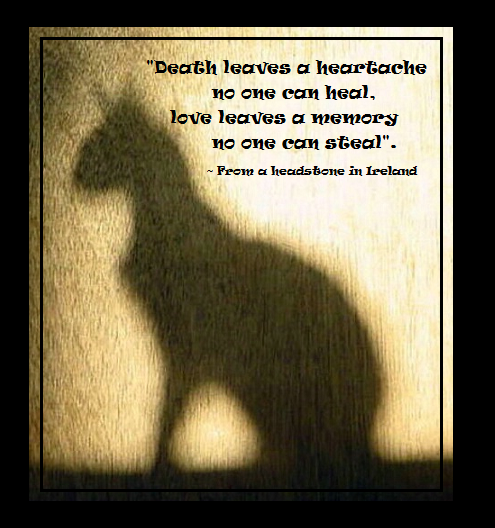 When The Time Comes This Might Go On My Cat's Memorialurn Amazing Cat Loss Quotes