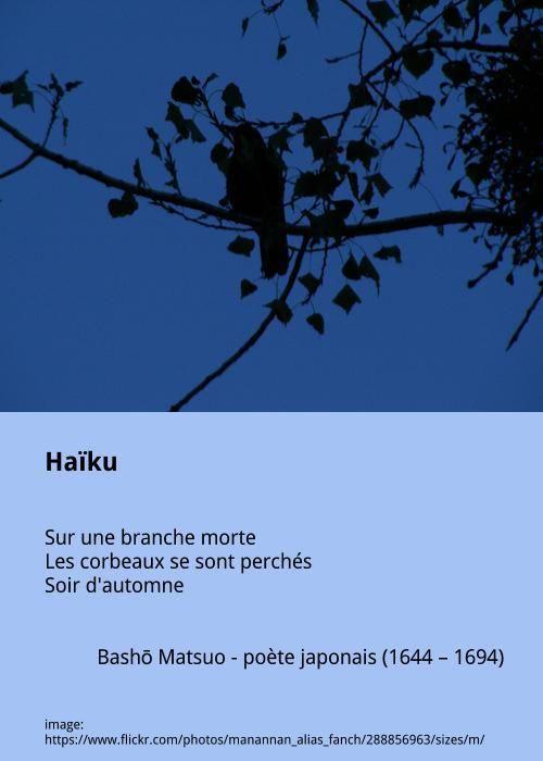 Bashō Matsuo - Haïku | Haiku francais, Haïku, Poeme francais