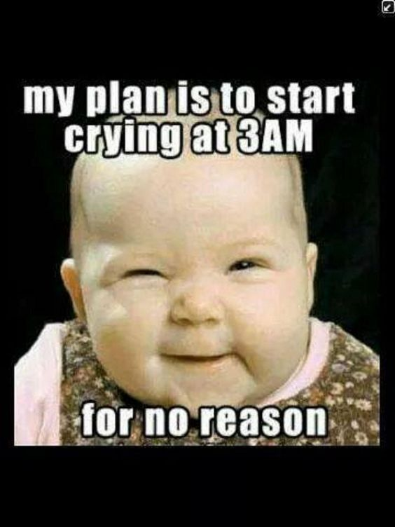 Top 23 Funny Memes For Kids Baby Jokes Funny Baby Memes Funny Baby Quotes