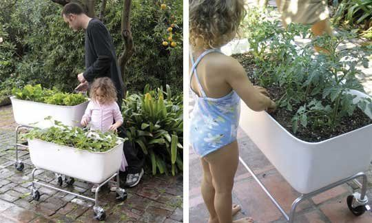 Food Map Containers: Portable Vegetable Gardening | Vegetable garden