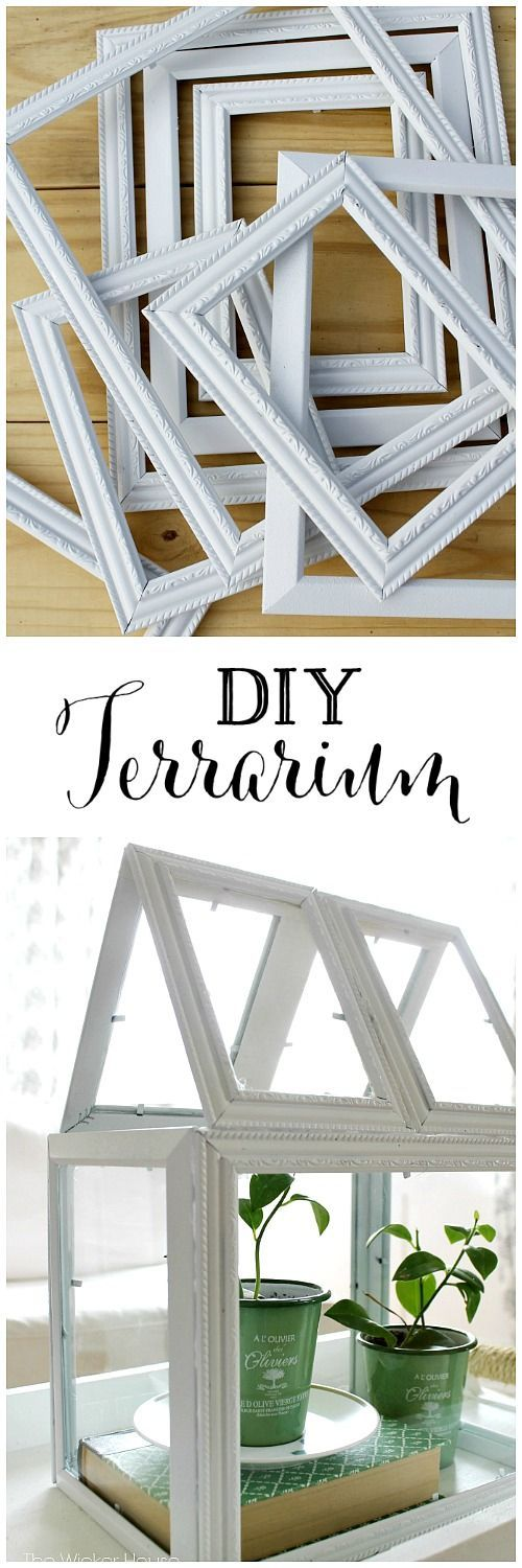 Can you believe this gorgeous DIY Terrarium was made from dollar store frames? by Ella Claire