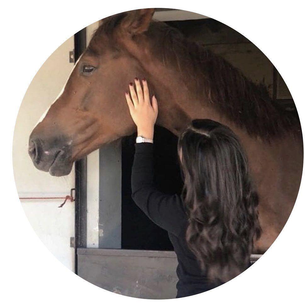 افـتار بنـات Horse Girl Photography Profile Picture For Girls Instagram Photo Ideas Posts