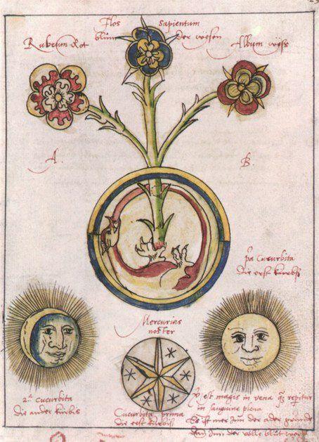 Hieronymus Reusner- Pandora 1588