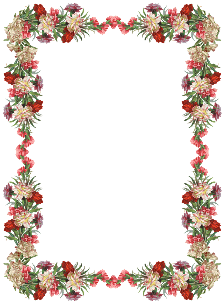 FREE digital vintage flower frame and border png with transparent background