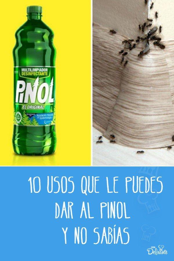 10 Usos Que Le Puedes Dar Al Pinol Y No Sabías Limpieza De Colchones Productos De Limpieza Ecologicos Trucos De Limpieza
