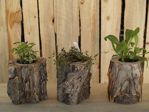 Aspen log planter rustic aspen wood planters succulent for Wooden cactus planter
