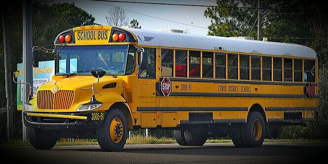 Pin On School Bus For Sale