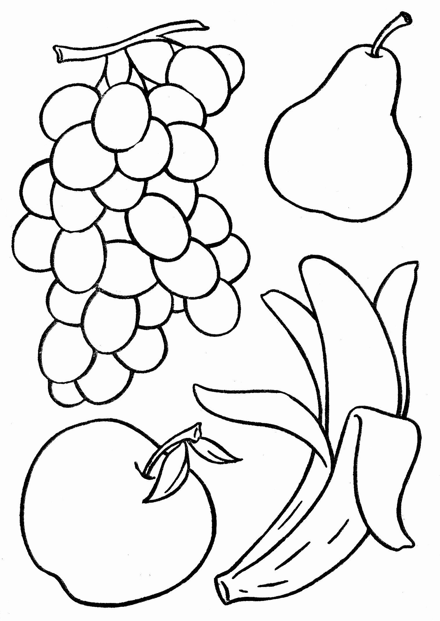 Coloring Pages Fruits And Vegetables Lovely Basketful To