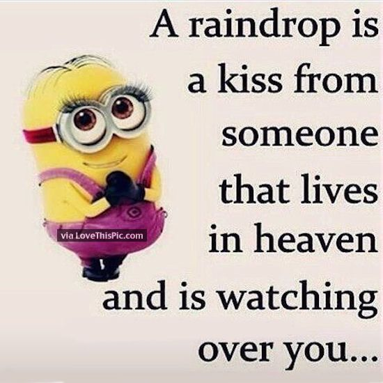 A Raindrop Is A Kiss From Someone Quotes I Miss You