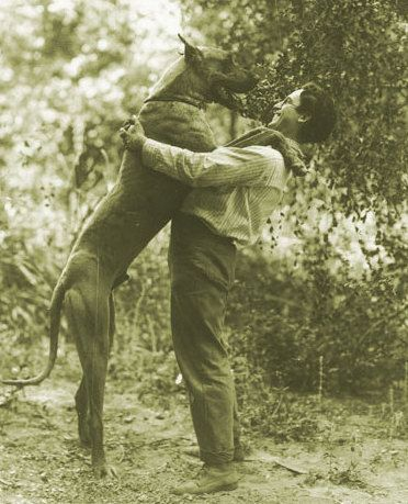 "Harold Lloyd with his favorite Great Dane ""Prince"", on location for ""Girl Shy"" (1924)"